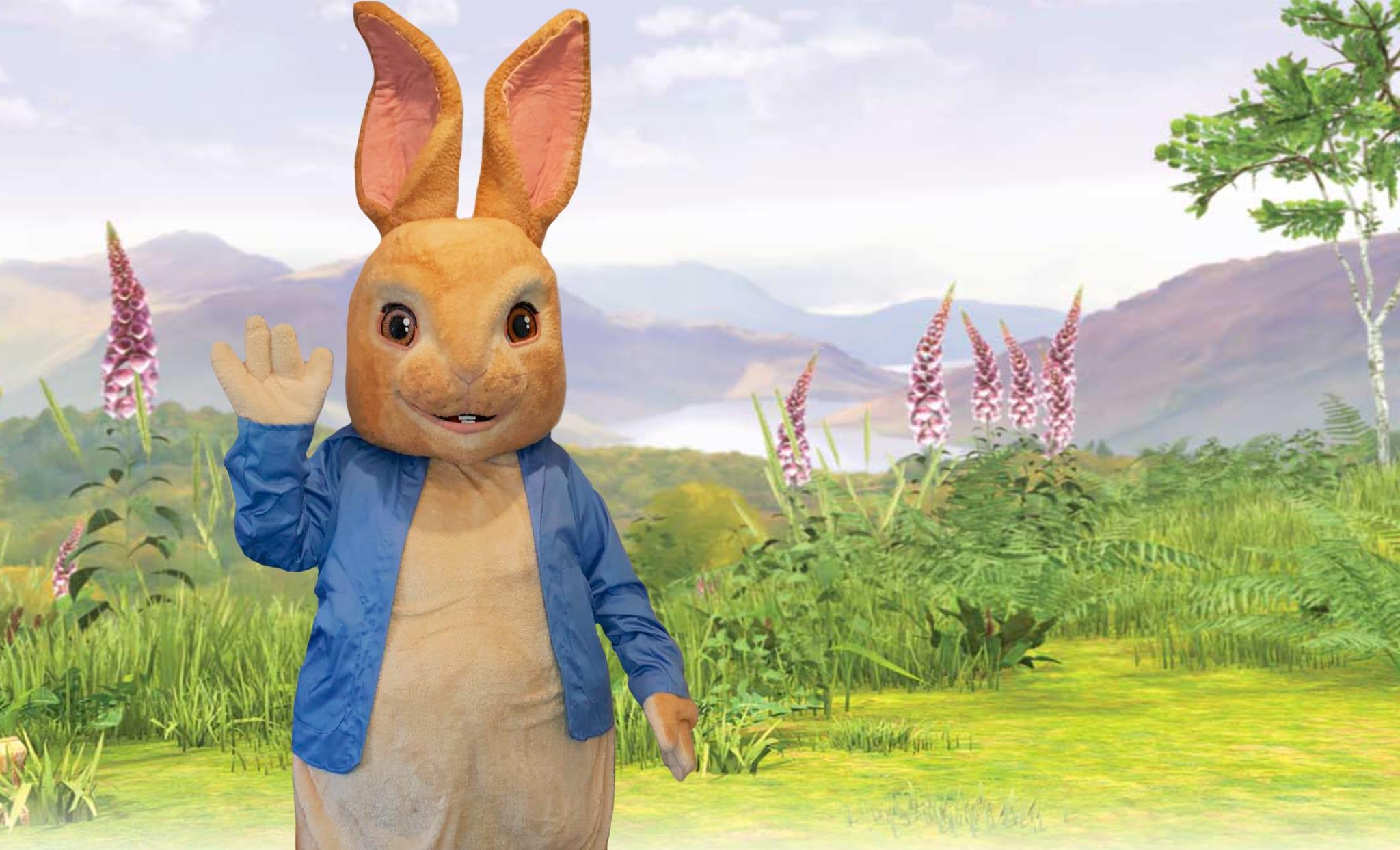 Pete Rabbit